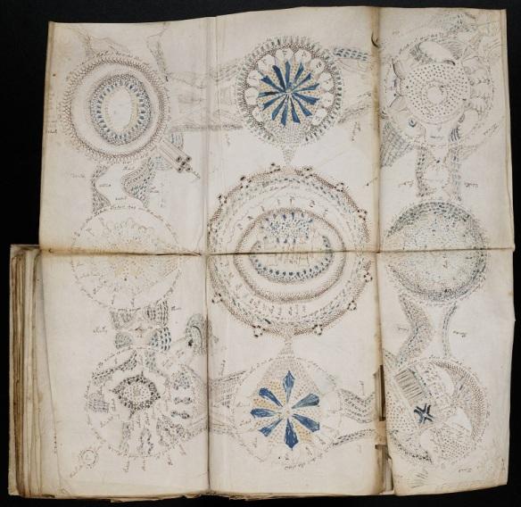 voynich_manuscript_158