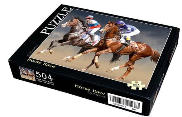 horse race puzzle