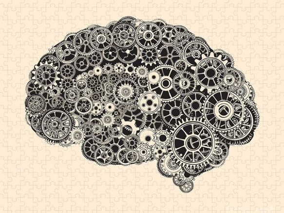 cogs-in-the-shape-of-a-human-brain-ryger